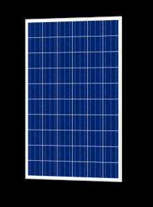 پنل خورشیدی پلی کریستال 250 واتی هورسا www.energyproducts.ir